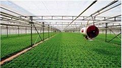 农业风速仪气象站在物联网技术中的应用